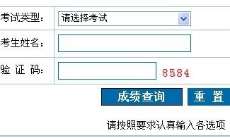 2013淄博市计算机应用能力考试成绩查询