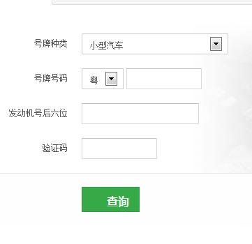 广东省机动车违章查询入口